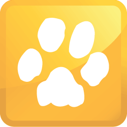 Lockport Illinois Pet Stain Removal