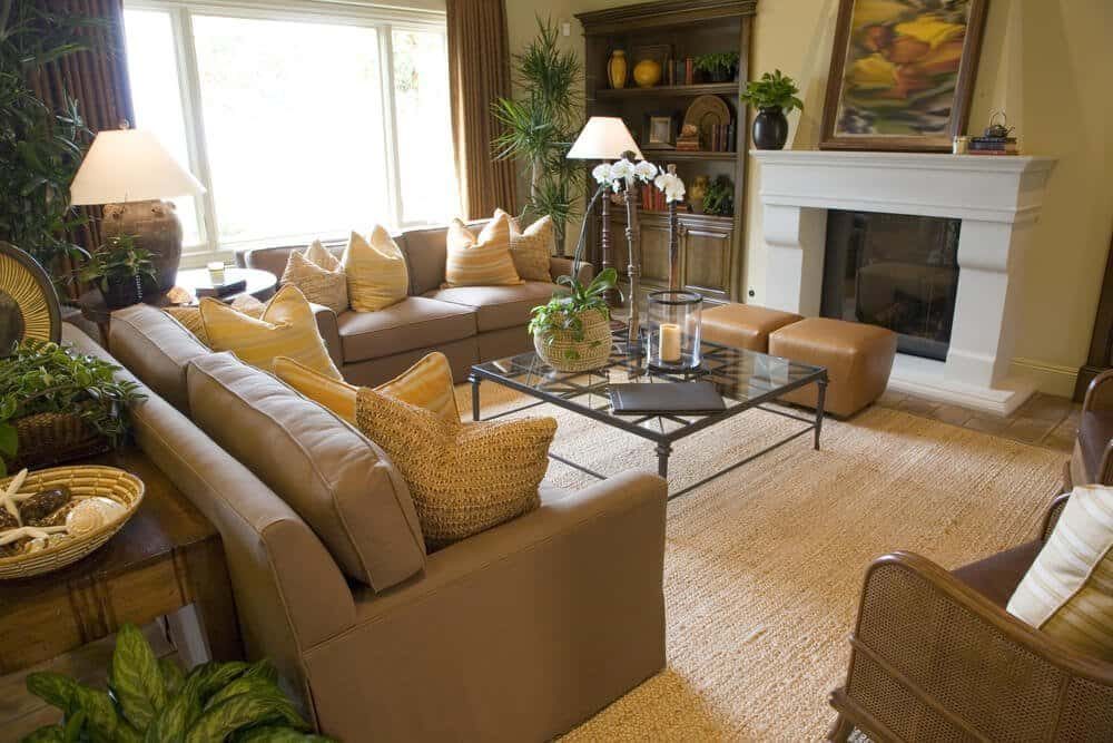 How Often Should You Clean Your Carpet (in Illinois)? 1